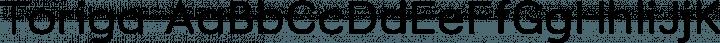 Toriga font family by JAM Type