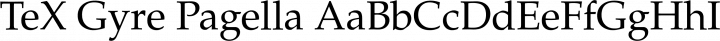 TeX Gyre Pagella Regular free font