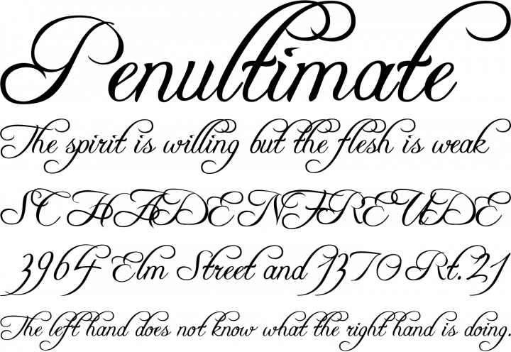 bas prix ca255 2575a Freebooter Script Font Free by Apostrophic Labs » Font Squirrel