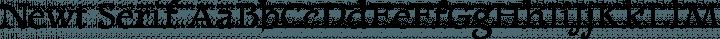 Newt Serif Regular free font