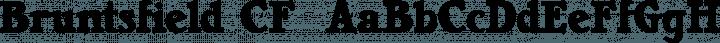 Bruntsfield CF  font family by Chuck Mountain