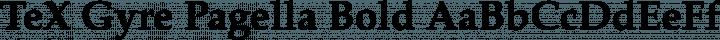 TeX Gyre Pagella Bold free font
