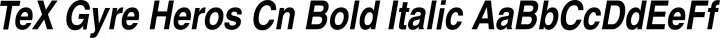 TeX Gyre Heros Cn Bold Italic free font