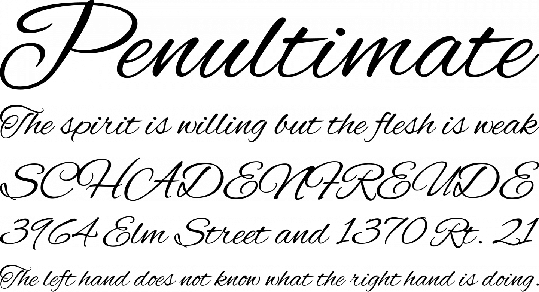 Alex Brush Font Free by TypeSETit » Font Squirrel
