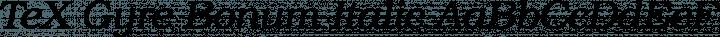 TeX Gyre Bonum Italic free font